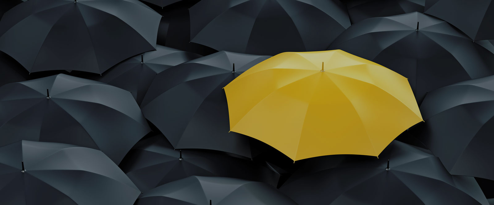 Umbrella Insurance Quote with First Choice Insurance Group